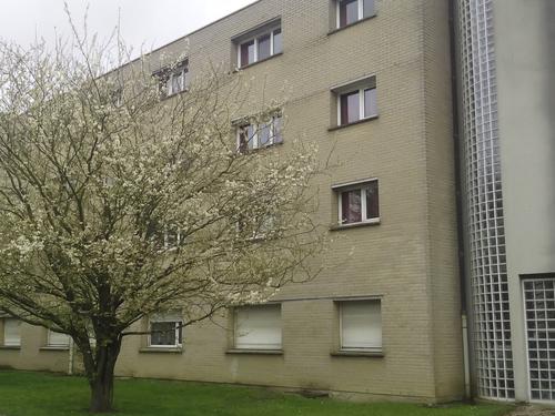 Logement individuel  Résidence Les Tilleuls (68 bis, rue du Tilleul 59200 Tourcoing)